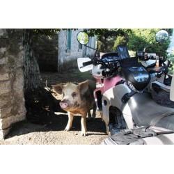 Trail en Corse/Roadtrip 7...